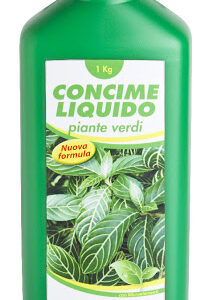 CONCIME PIANTE VERDI 1000 G